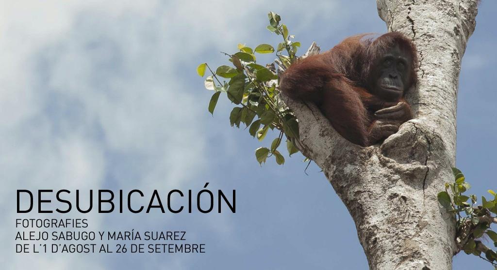 AGOST – SETEMBRE: FOTOGRAFIES i DOCUMENTAL de ALEJO SABUGO i MARÍA SUÁREZ
