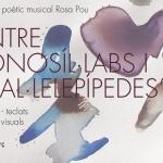 """Espectacle poètic musical """"entre monosíl·labs i paral·lelepípedes"""""""