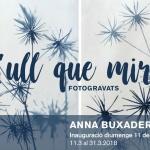 L'Ull que mira, d'Anna Buxaderas